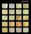Corado Multicolor Gold 0